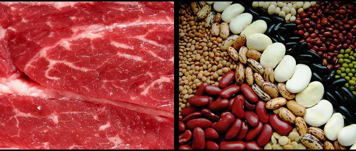remplacer la viande de nos assiettes palais savant mipygreen